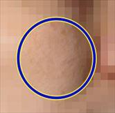f:id:hatikinkun:20201209230252j:plain