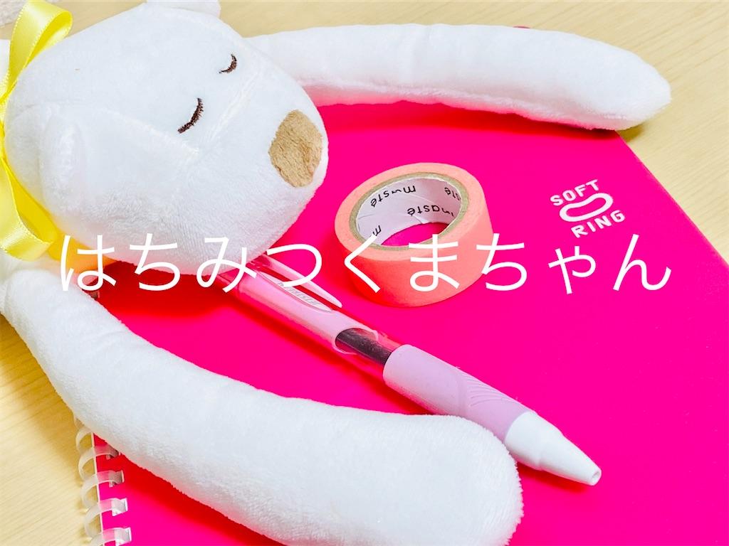 f:id:hatikuma_room:20200614231804j:image