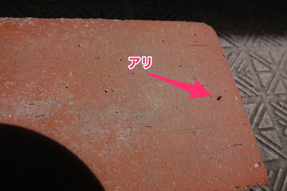 f:id:hato36:20200810135443j:plain