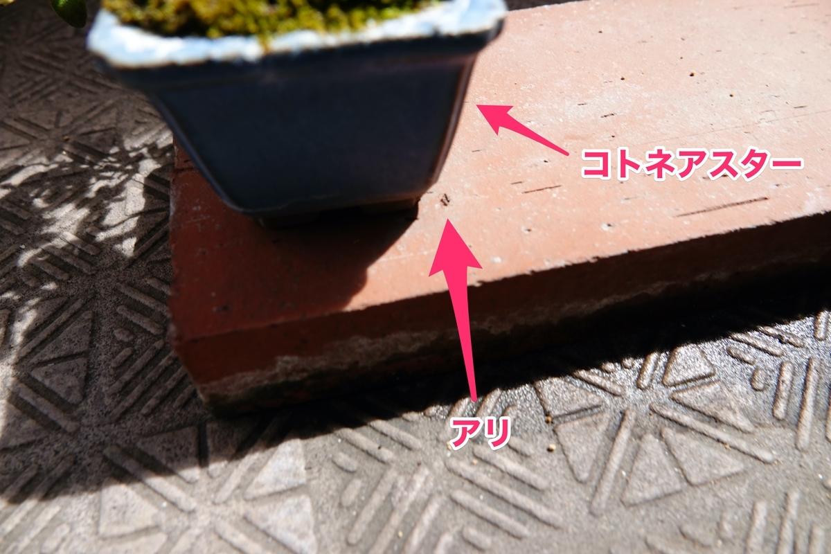 f:id:hato36:20200810135447j:plain