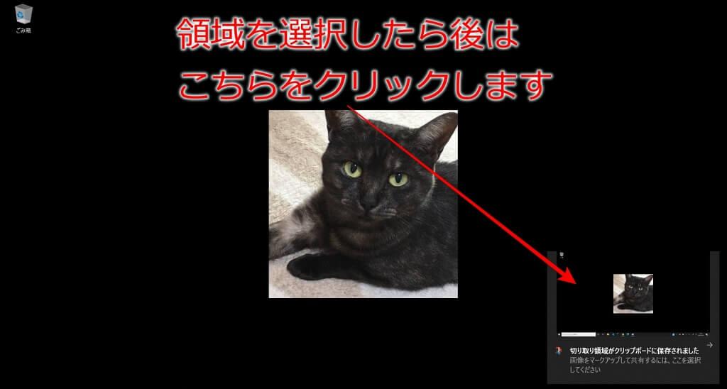 f:id:hato4268:20201010194546j:plain