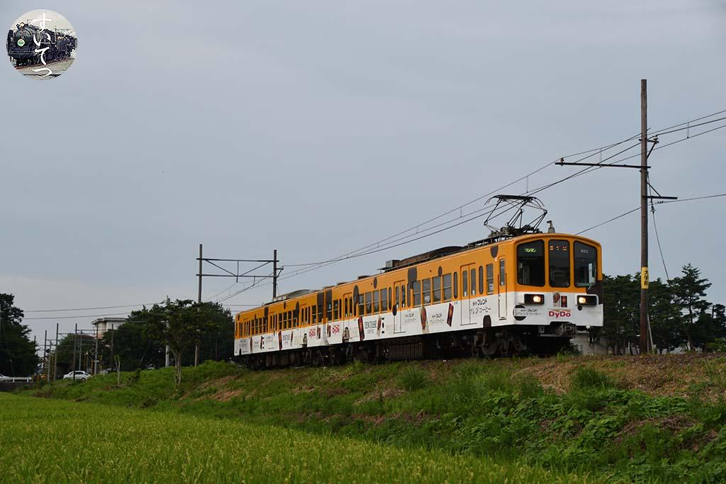 f:id:hato_express:20200523222900j:plain