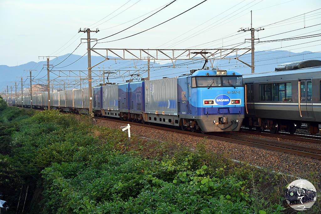 f:id:hato_express:20200628125355j:plain
