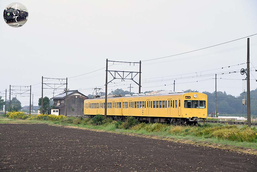 f:id:hato_express:20201020225733j:plain