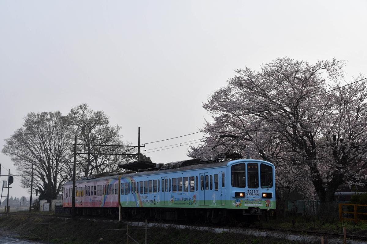 f:id:hato_express:20210330195523j:plain
