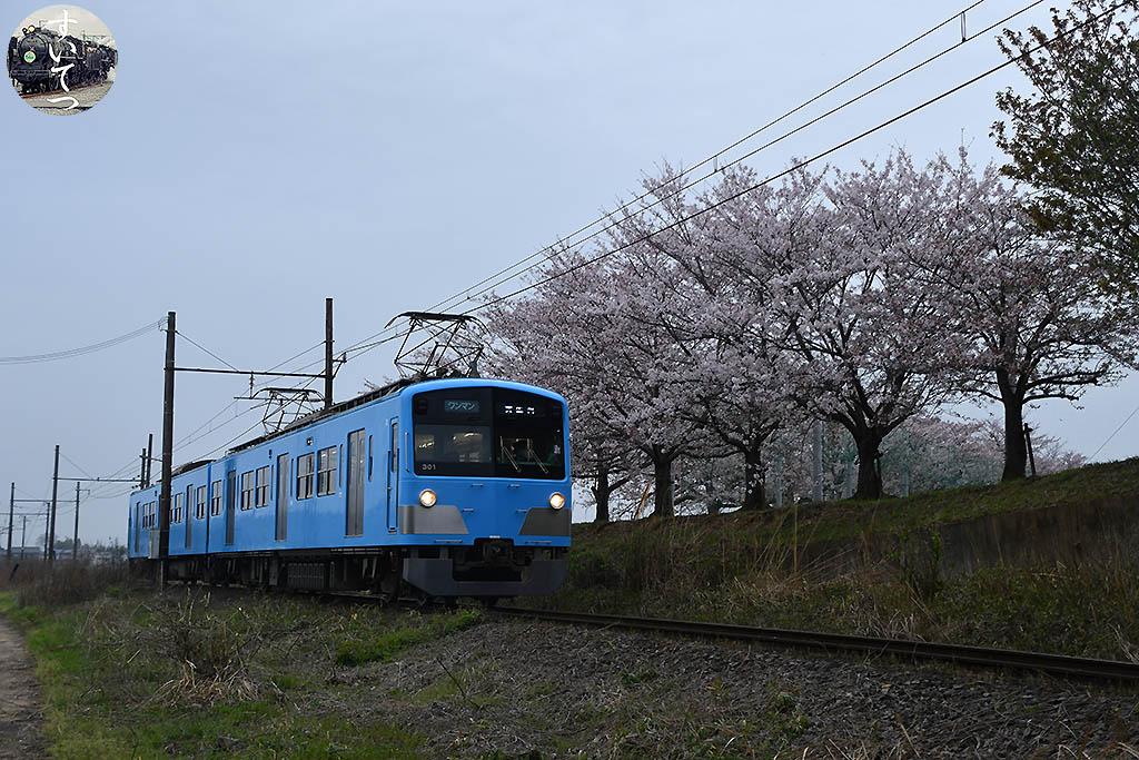 f:id:hato_express:20210404125648j:plain