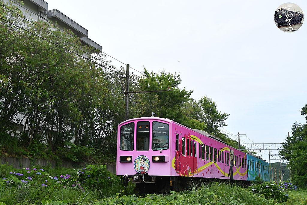 f:id:hato_express:20210618211120j:plain