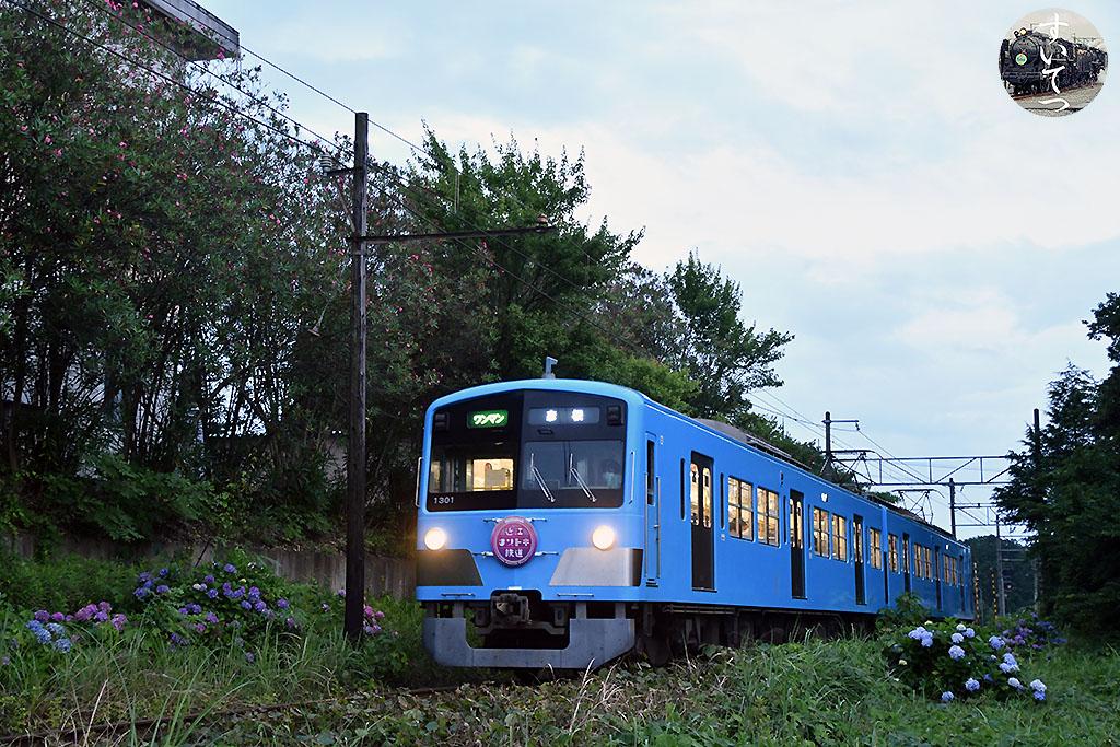 f:id:hato_express:20210706030745j:plain