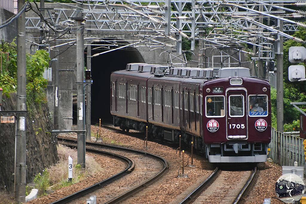 f:id:hato_express:20210712003907j:plain
