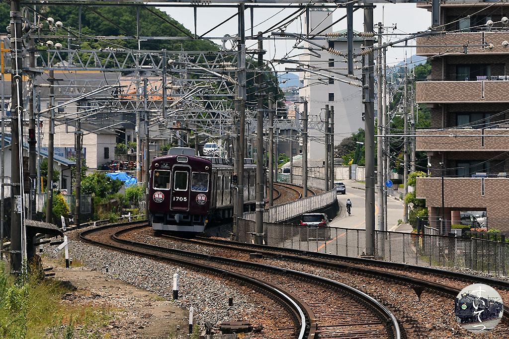 f:id:hato_express:20210712003925j:plain