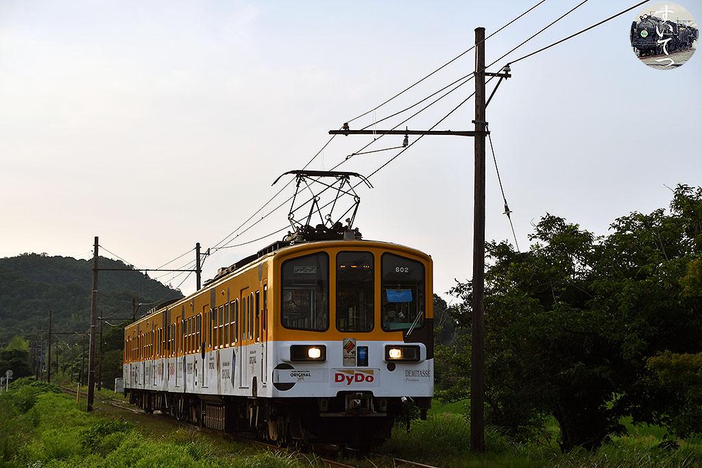 f:id:hato_express:20210713211920j:plain