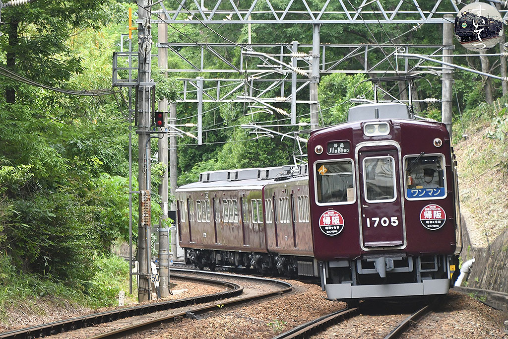 f:id:hato_express:20210717024401j:plain