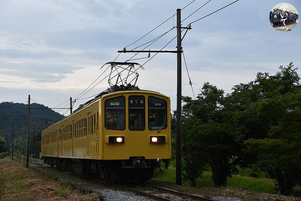 f:id:hato_express:20210727194250j:plain