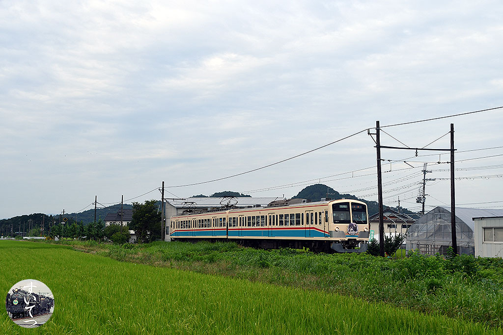 f:id:hato_express:20210729211655j:plain