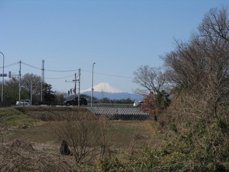 f:id:hatochan:20140315094736j:image:w320:left