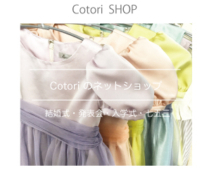 f:id:hatoko-katou:20161109200644j:plain