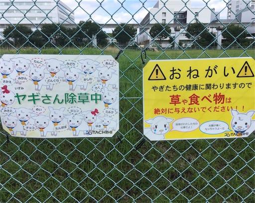 f:id:hatomugi221:20170813123351j:image:w300
