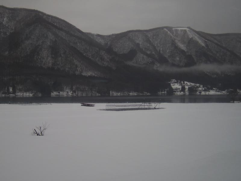 f:id:hatomugyu:20120317163808j:image