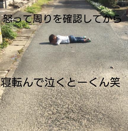 f:id:hatoyu-k:20181114111520p:plain