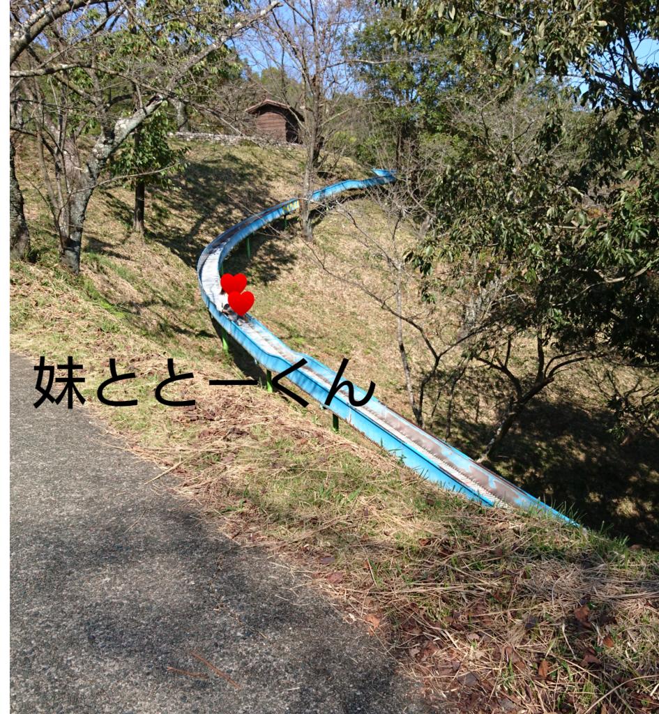 f:id:hatoyu-k:20181114113729p:plain