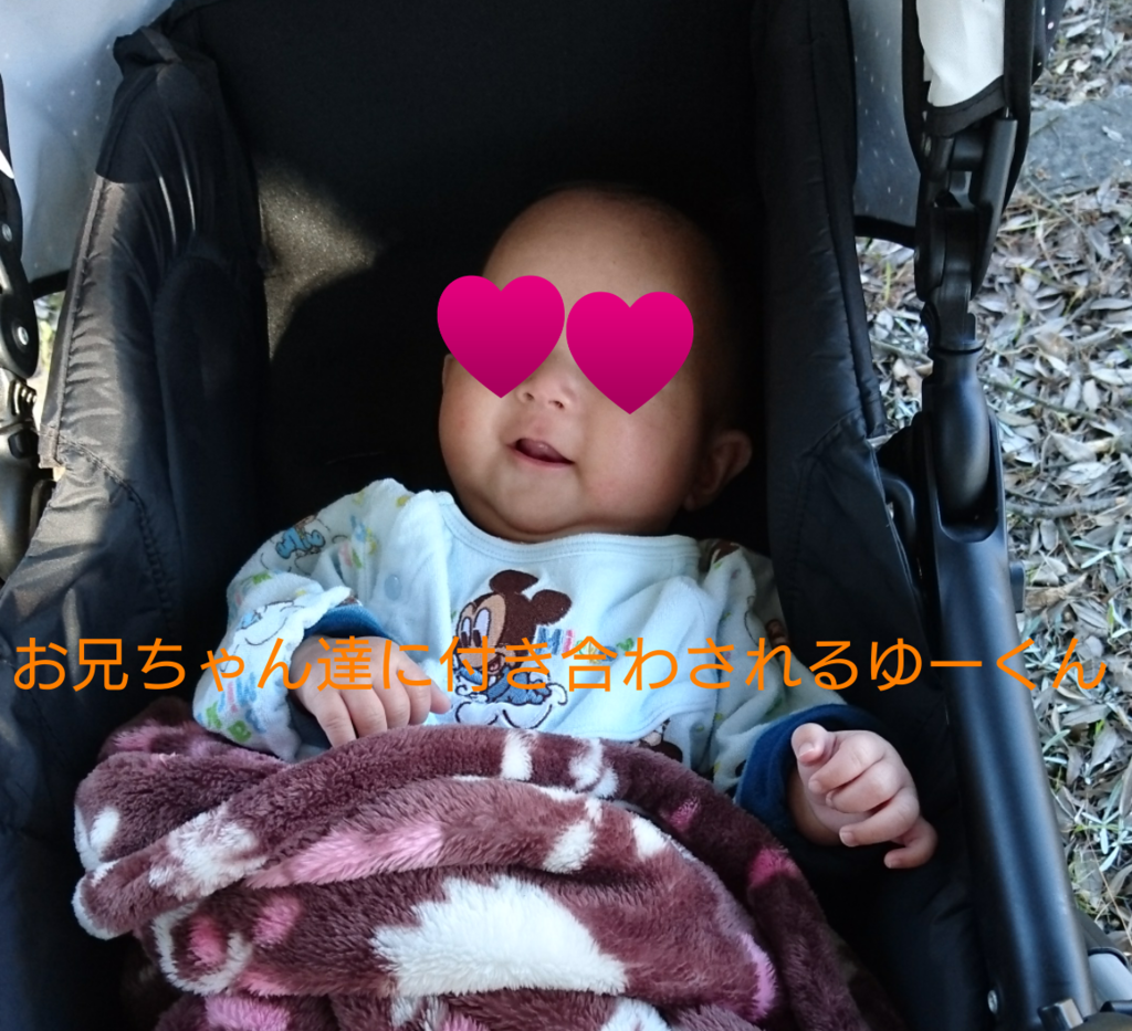 f:id:hatoyu-k:20181114113745p:plain