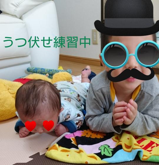 f:id:hatoyu-k:20181117175701p:plain