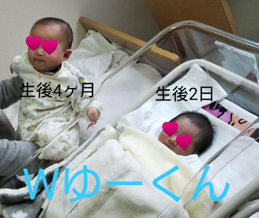 f:id:hatoyu-k:20181128124705p:plain