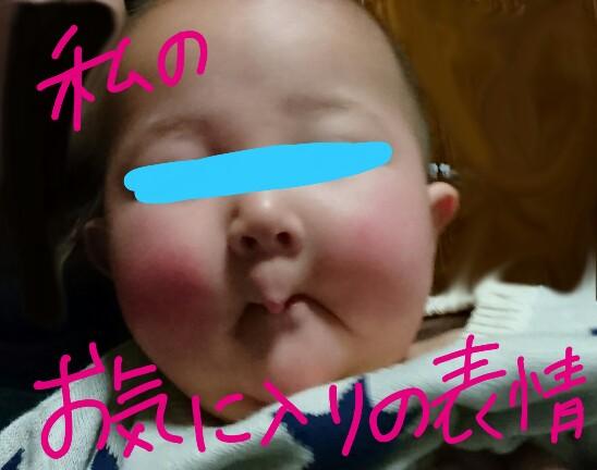 f:id:hatoyu-k:20190109134706j:plain