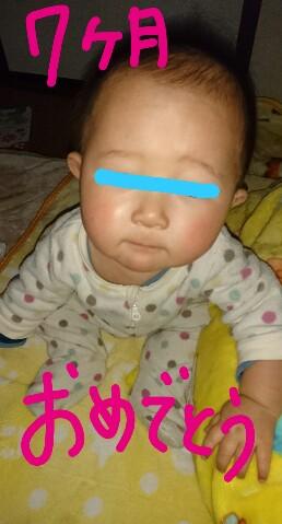 f:id:hatoyu-k:20190221144804j:plain