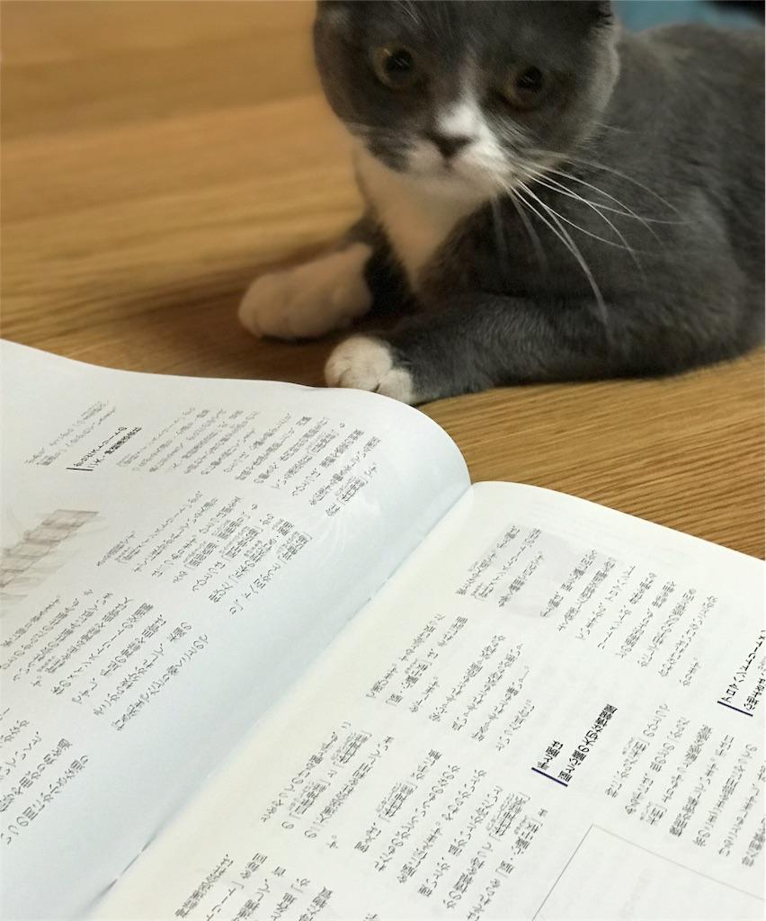 f:id:hatsuho44:20180306001558j:image