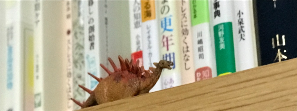 f:id:hatsuho44:20190215000821j:image
