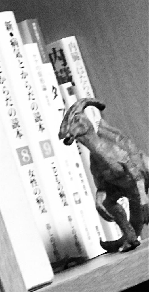 f:id:hatsuho44:20200728082456j:image