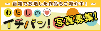 f:id:hatsuratsu:20200218234832p:plain