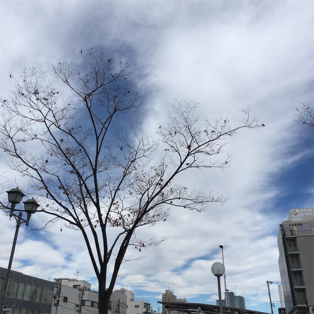 f:id:hatsuri888:20161128111543j:image