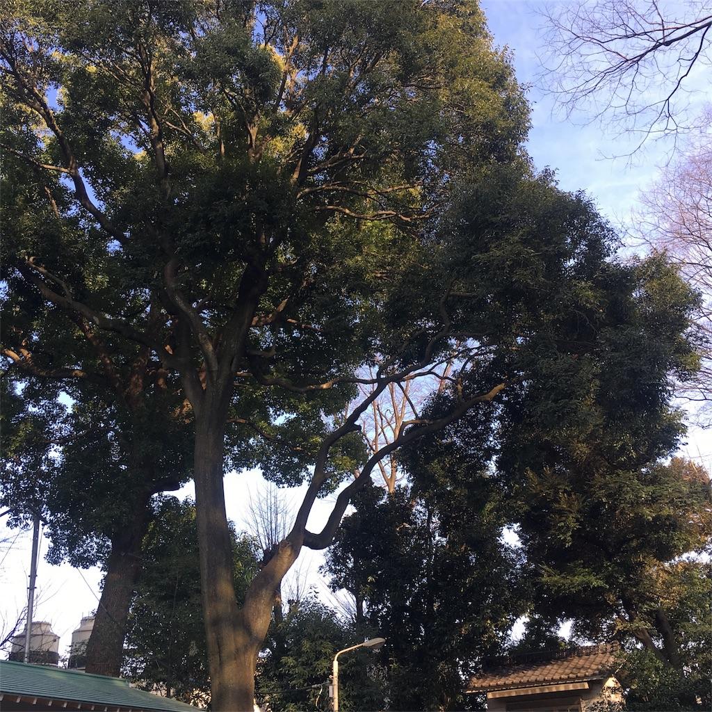 f:id:hatsuri888:20170312224134j:image
