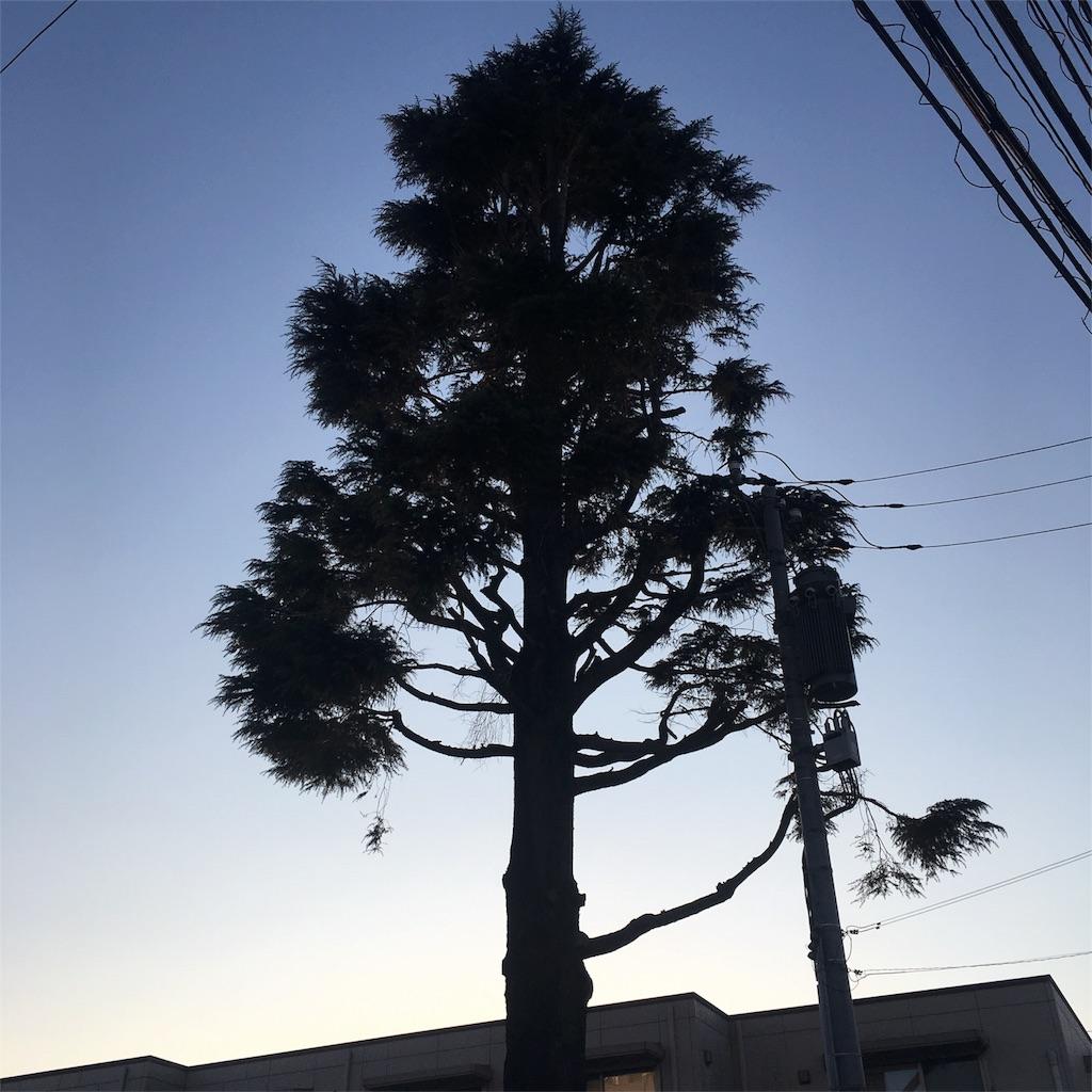 f:id:hatsuri888:20170327180812j:image