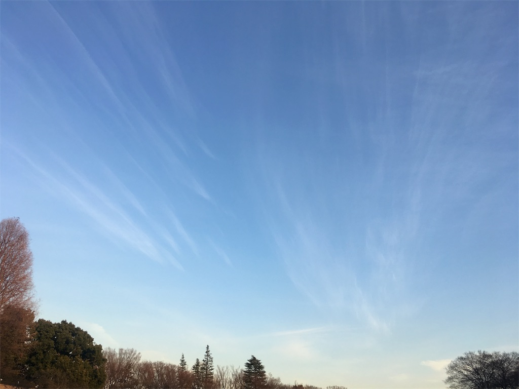 f:id:hatsuri888:20180116212619j:image