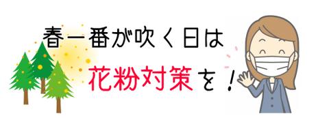 haruitikafun[1]
