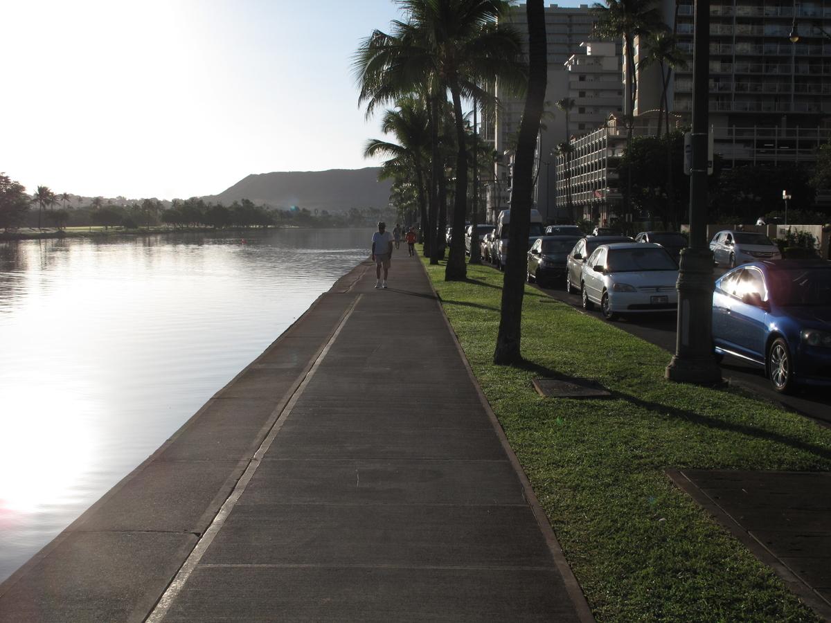 f:id:hawaii-ojisan:20200205225137j:plain