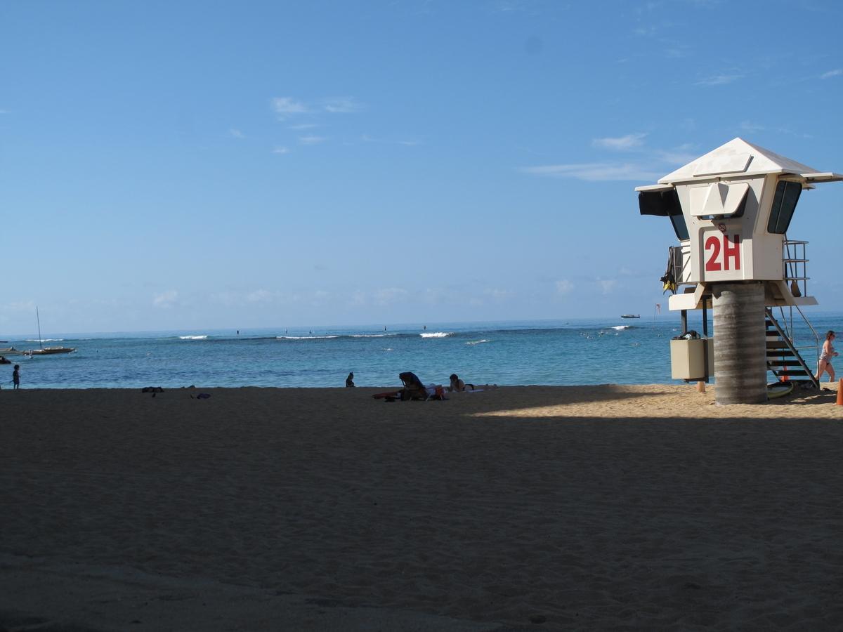 f:id:hawaii-ojisan:20200218123523j:plain