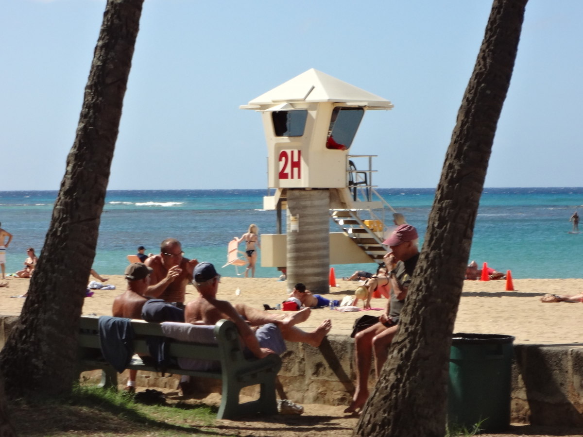 f:id:hawaii-ojisan:20200510080439j:plain