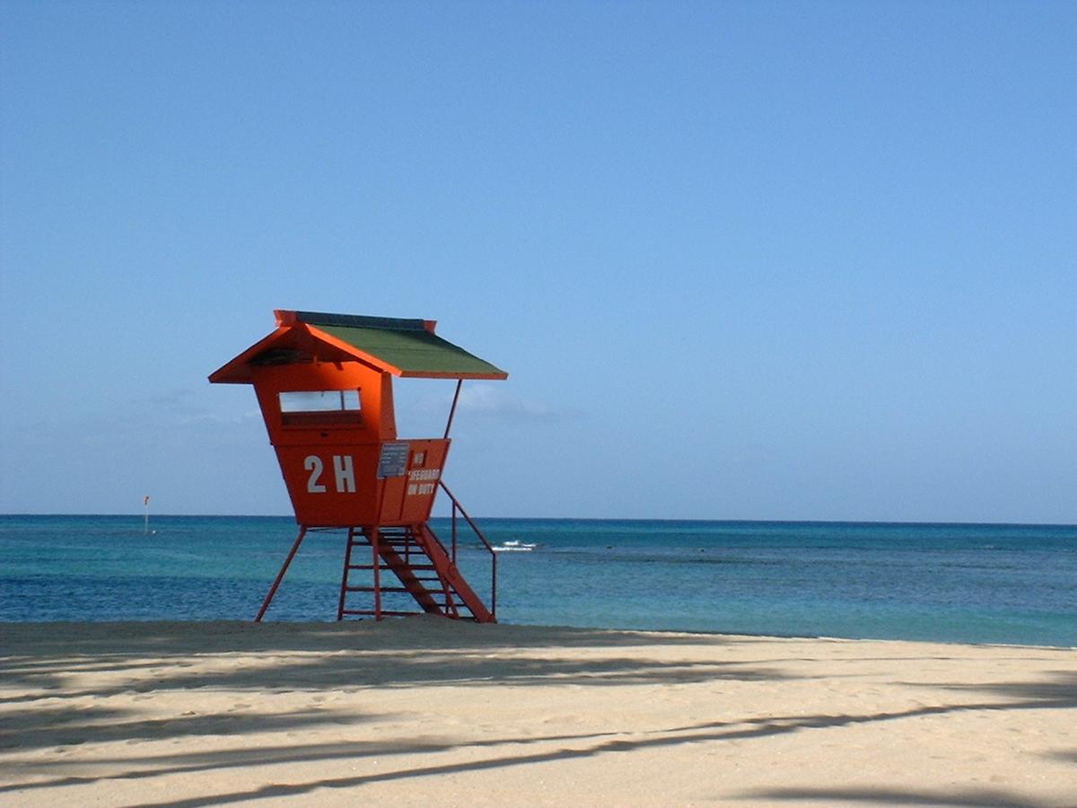f:id:hawaii-ojisan:20200516055252j:plain