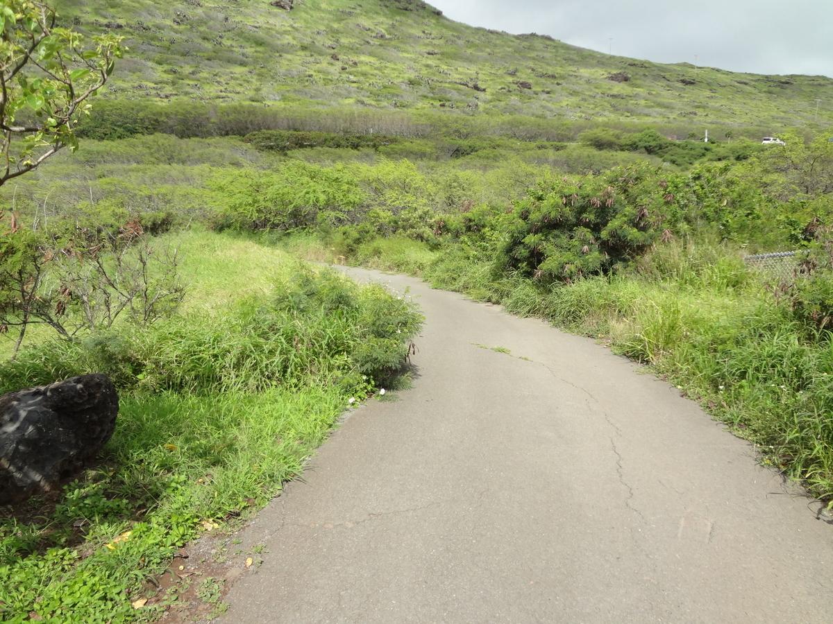 f:id:hawaii-ojisan:20200911063744j:plain
