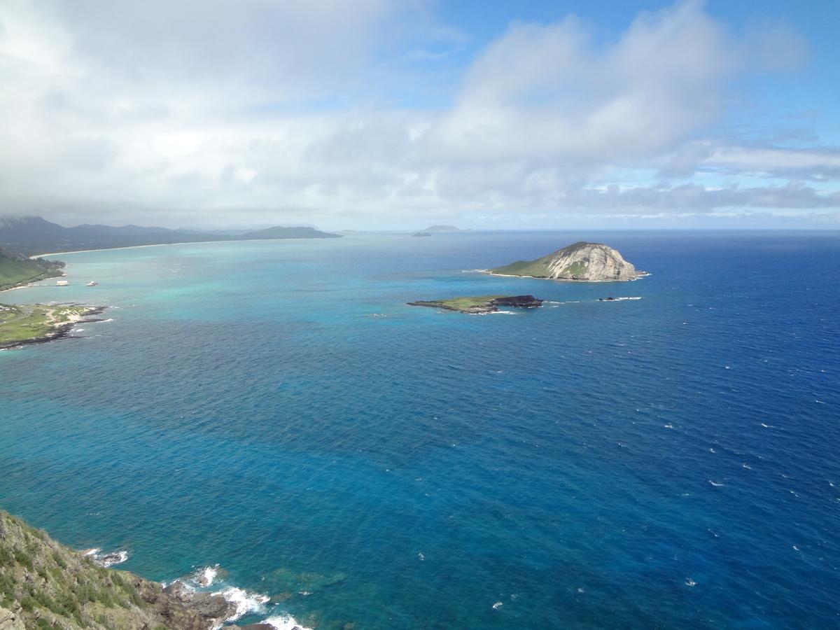 f:id:hawaii-ojisan:20200918061836j:plain
