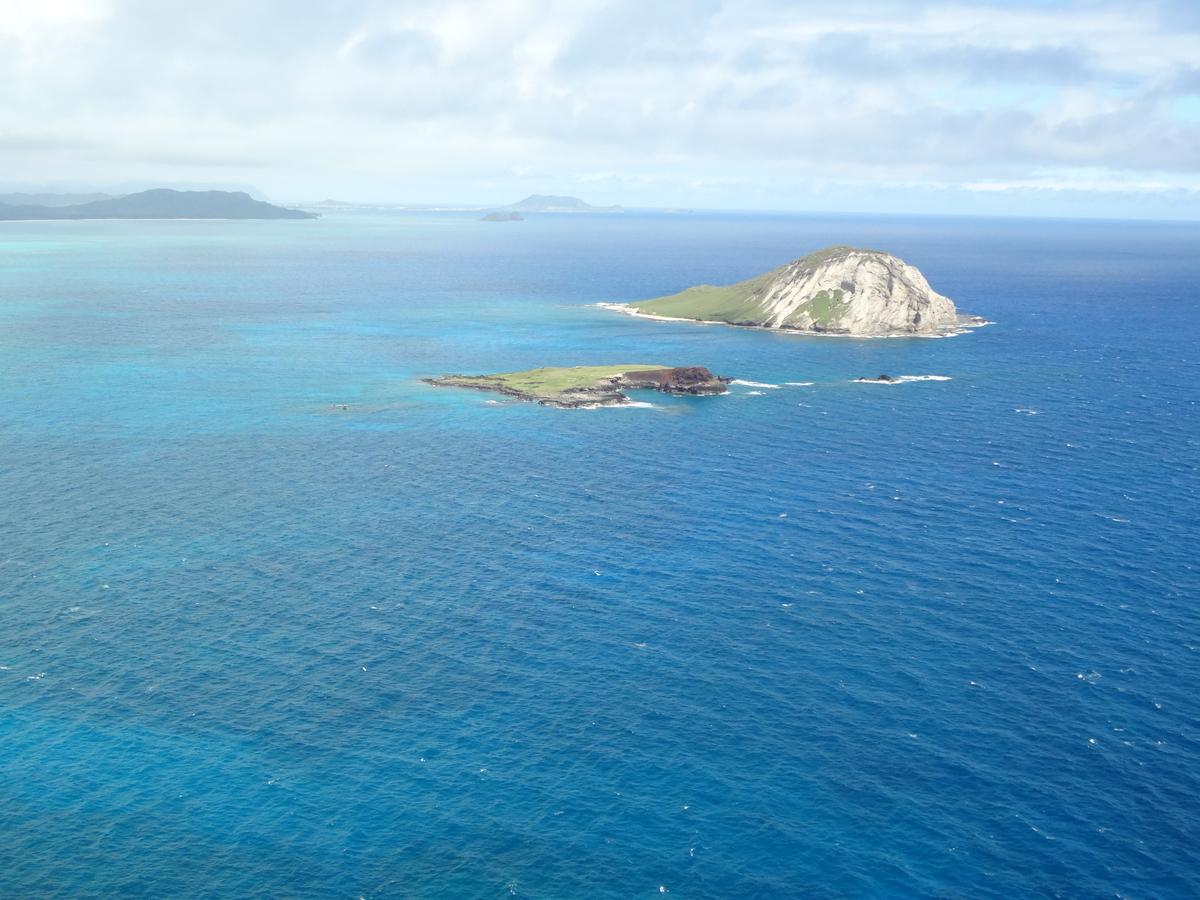 f:id:hawaii-ojisan:20200919065318j:plain