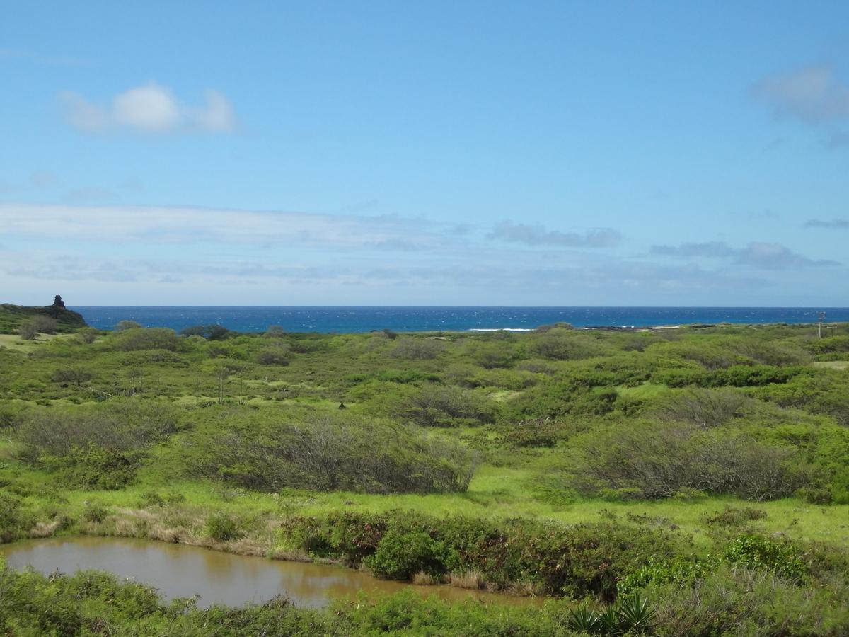 f:id:hawaii-ojisan:20200921075502j:plain