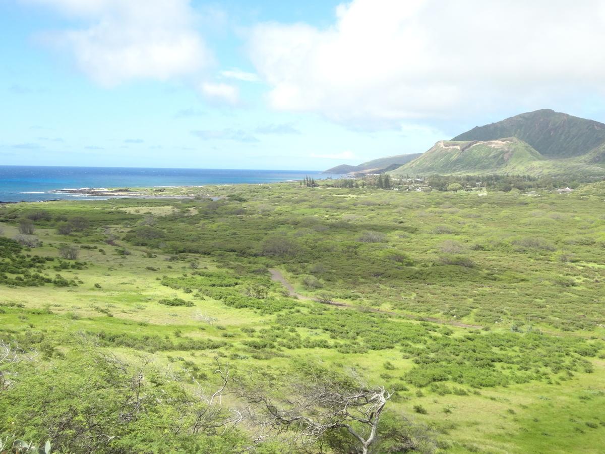 f:id:hawaii-ojisan:20200922090515j:plain