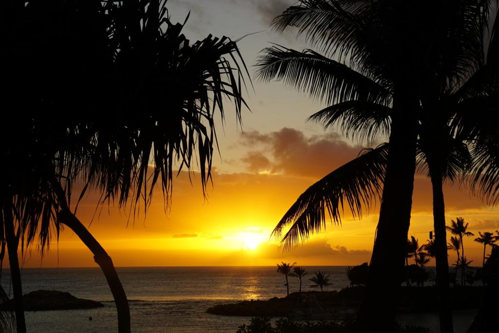 f:id:hawaii007:20161116183044j:plain