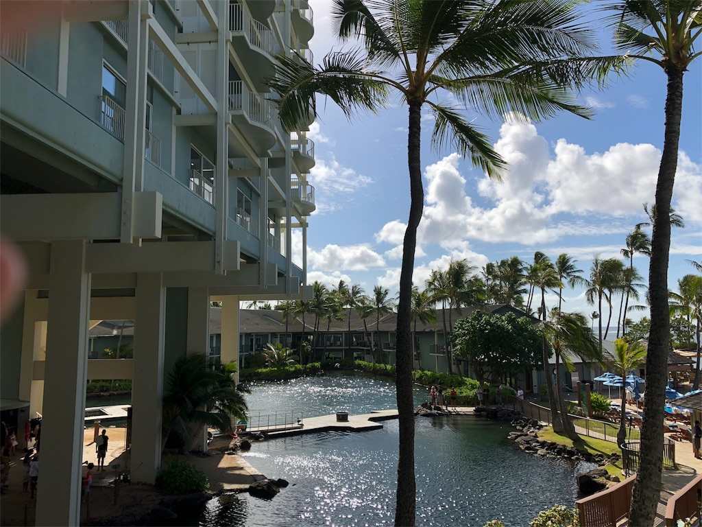 f:id:hawaii881:20180910094535j:image