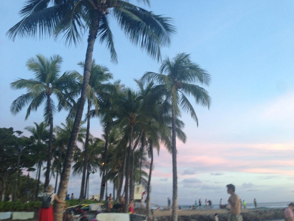 f:id:hawaii881:20180921114251j:plain